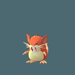Rattatac Shiny